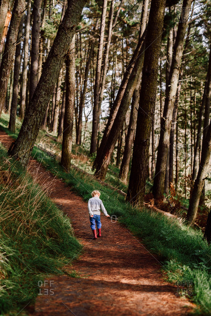 Child walking on path in forest in New Zealand