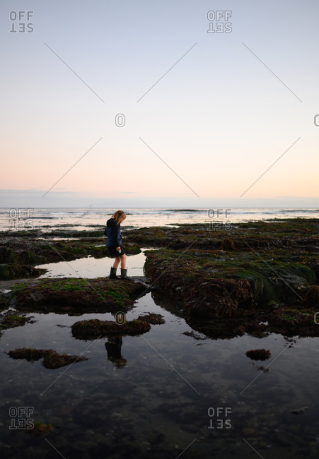 Child walking around looking down at tide pools at sunset