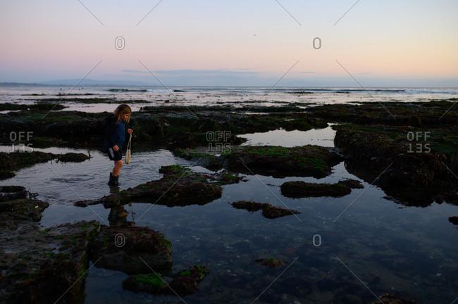 Child walking through tide pools at sunset carrying bag