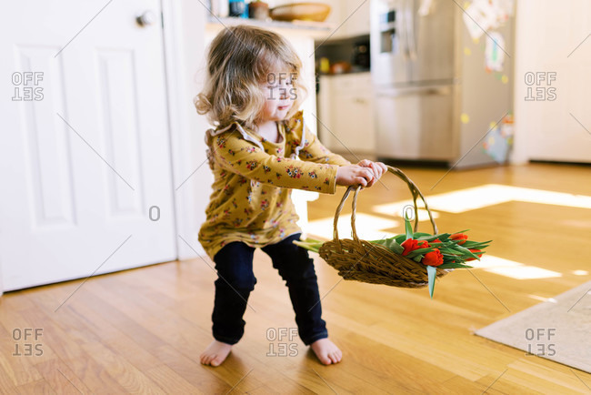 Little two year old girl holding a bunch of tulips.