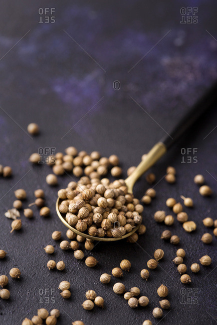 White peppercorn spice in the spoon with copy space