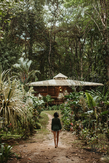 Back view of lonely woman walking on narrow path between rows of green tropical plants with house during vacation