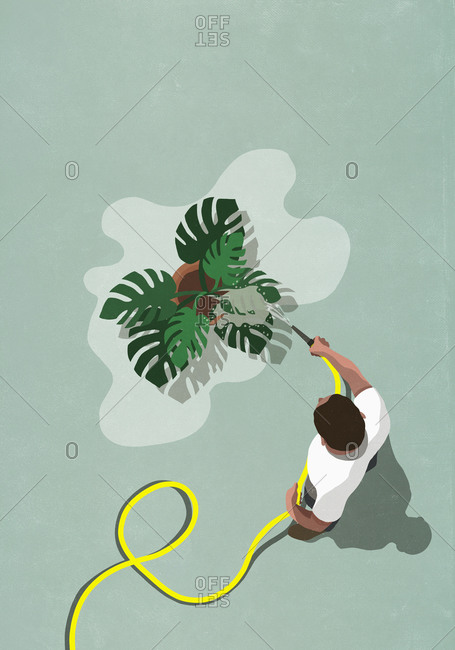 Man with hose watering tropical plant