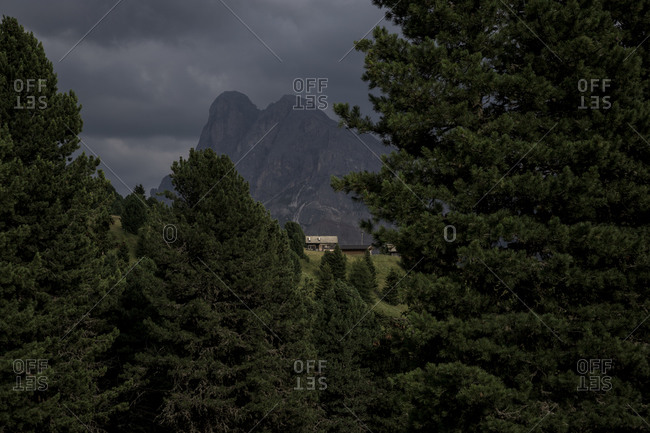 Mountain peaks seen through trees in The Dolomites in the Alto-Adige region of South Tyrol, Italy.