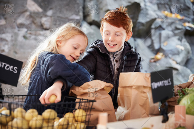 Smiling male and female sibling buying vegetables at market stall