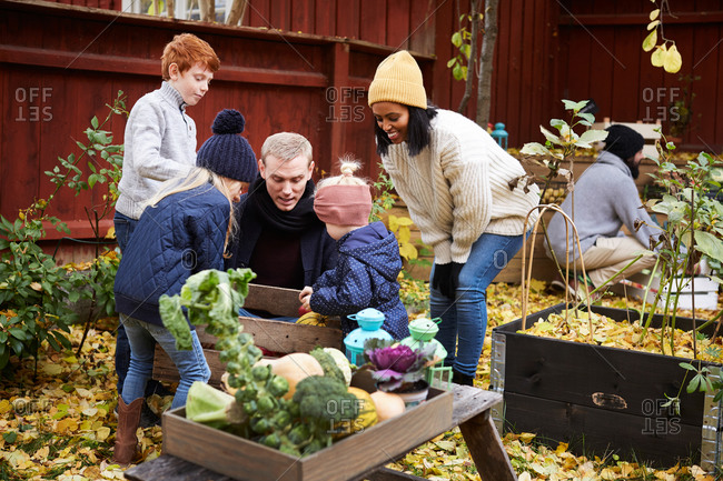 Male and female talking to children while man collecting fresh produce in yard