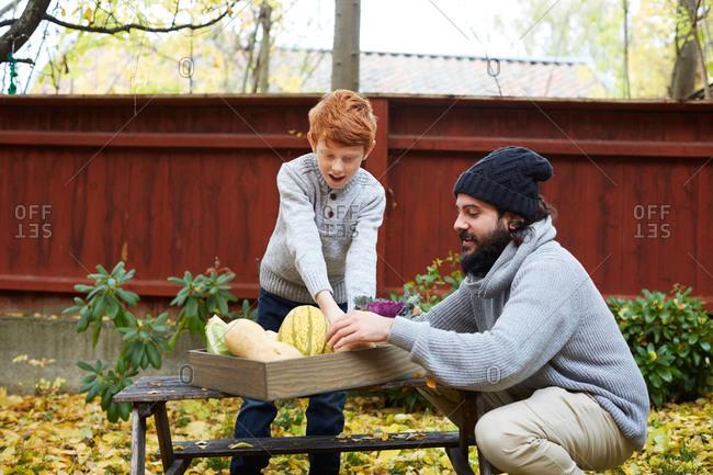 Man and boy arranging vegetable in basket at back yard
