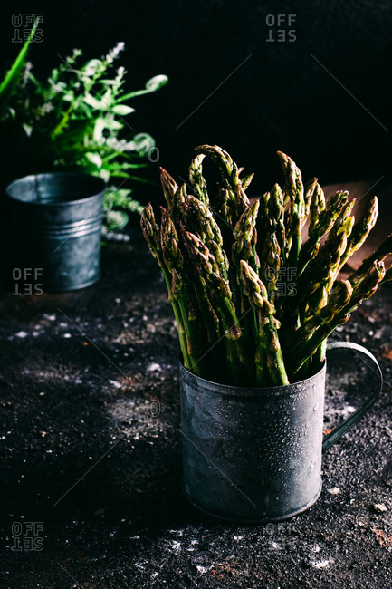 Bunch of fresh green asparagus in metal pot placed on ground near green plants on black background