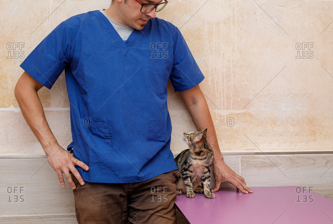 Crop male vet doctor in uniform standing against wall near table with curious scared cat and looking at each other in clinic