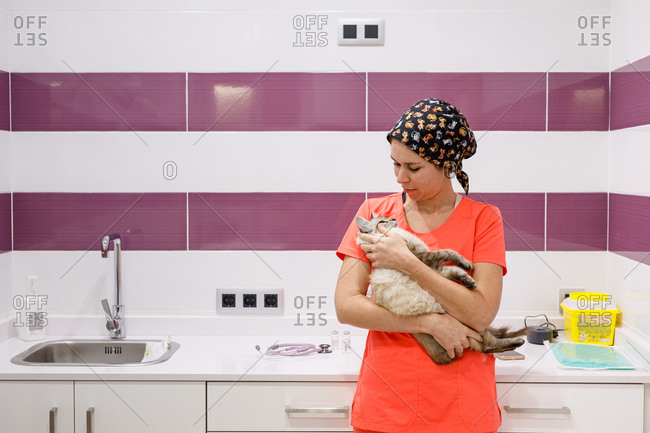 Young female veterinarian in orange uniform holding and hugging cute cat in modern vet clinic