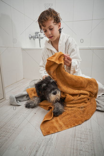 Child drying his dog after showering in the bathtub at home