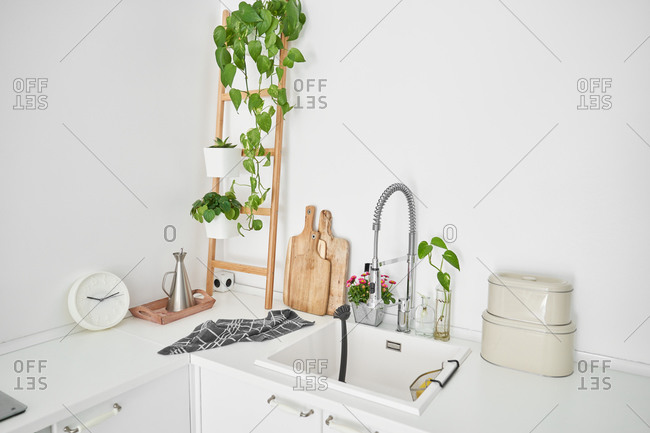 View of the kitchen sink of a minimalist, all-white house with plants
