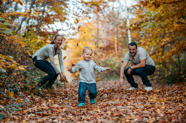 Young boy playing in autumn leaves. Child walking through leaves in woods with mother and father.