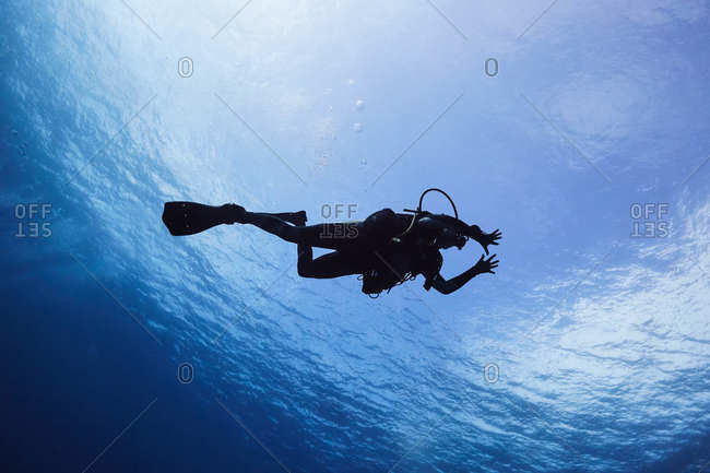 Low angle view of scuba diver in blue waters in the Cayman Islands