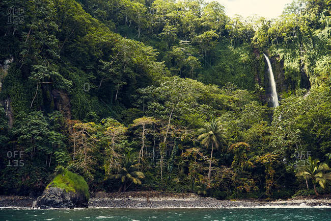 Tropical rainforest with waterfall on the coast of Cocos Island, Costa Rica
