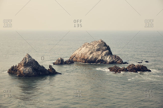 Birds covering rock formations off the coast of San Francisco, California