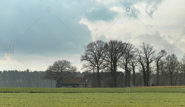 Rural farmhouse surrounded by trees