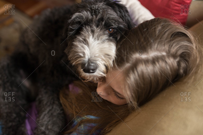 Dog looks while snuggling with girl