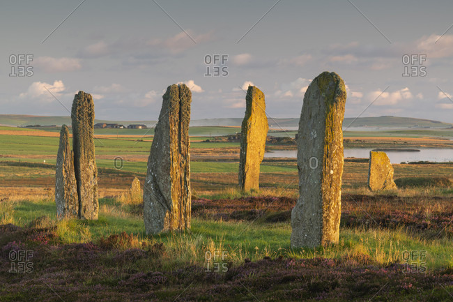 Neolithic Ring of Brodgar, UNESCO World Heritage Site, at dawn on the Orkney Islands, Scotland, United Kingdom, Europe