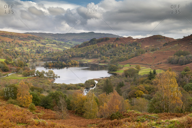 Autumn colors surrounding Rydal Water in the Lake District National Park, UNESCO World Heritage Site, Cumbria, England, United Kingdom, Europe