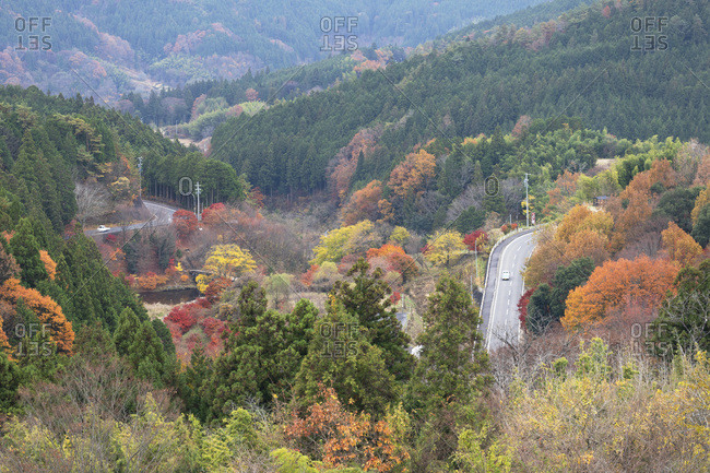 November 26, 2019: Cars driving through autumnal trees, Magome, Gifu Prefecture, Honshu, Japan, Asia