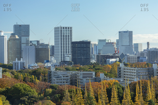 December 3, 2019: Autumnal trees in Meiji Jingu Gaien and skyscrapers, Tokyo, Honshu, Japan, Asia