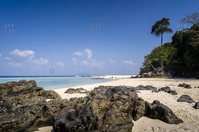 Rocky Bamboo Beach with palm tree, Maya Bay Phi Phi Island, Krabi Province, Thailand, Southeast Asia, Asia