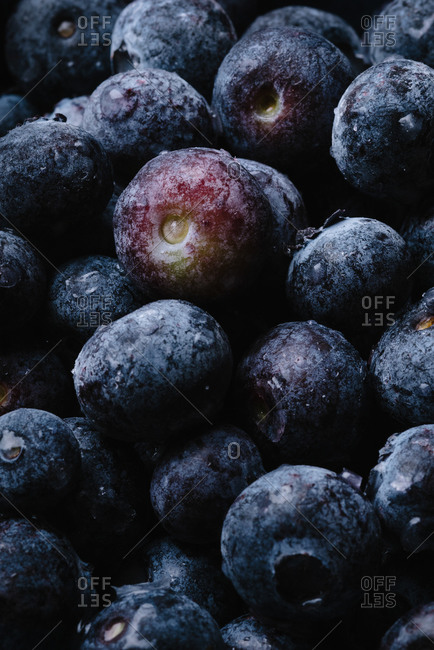 Close up of fresh blueberries