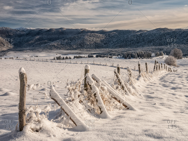 Winter path in the Piana Cansiglio plateau, Veneto, Italy