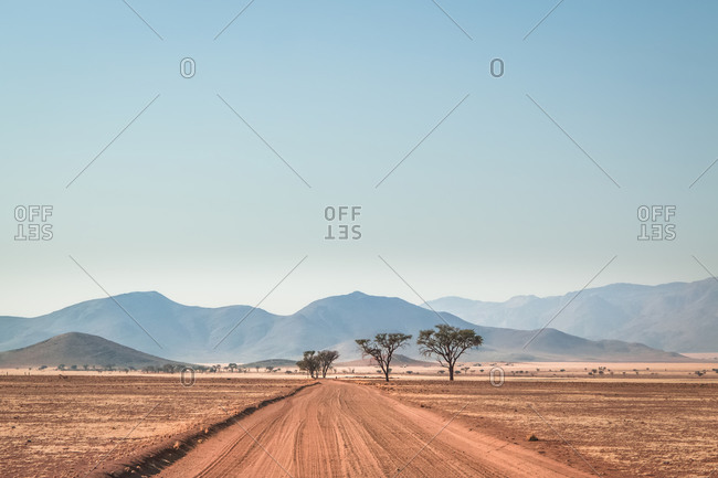 A sand road in the middle of the desert with a group of trees and Tiras Mountains in the background, Kanaan Desert Retreat, on the border of Namib Desert, Namibia, Africa