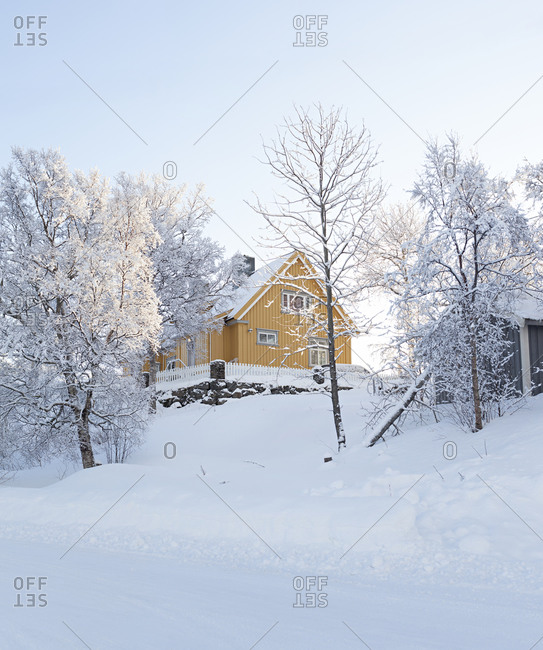 Yellow wooden house in beautiful snow landscape in Lofoten, Norway