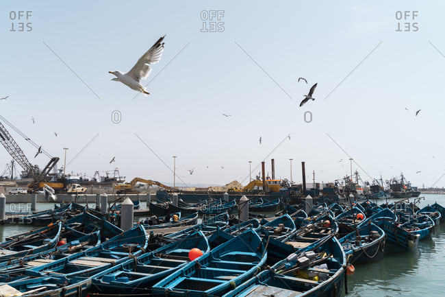 August 28, 2019: Moored fisher boats at harbor- Essaouira- Morocco