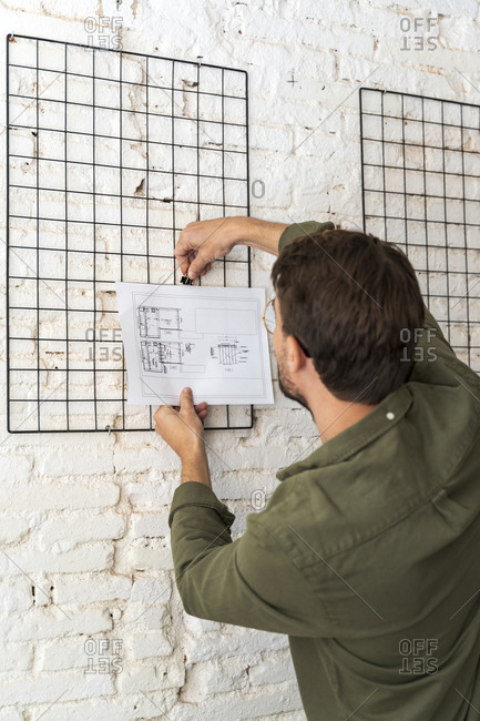Rear view of man fixing architectural plan at the wall