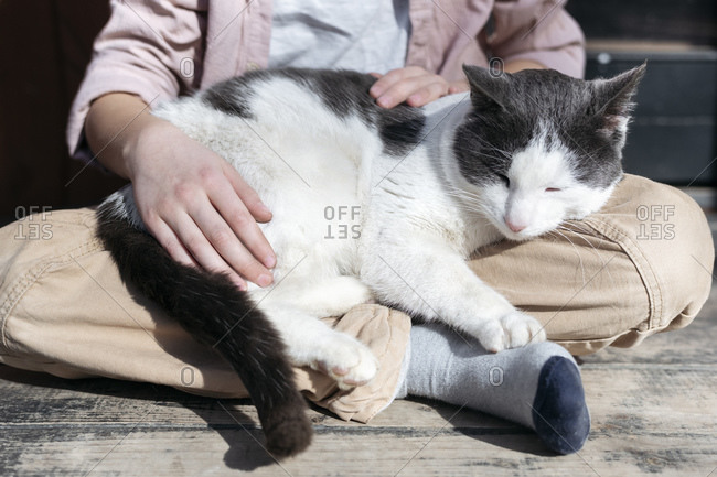 Low section of boy sitting with cross legged while cat sleeping on him- Tarusa- Russia
