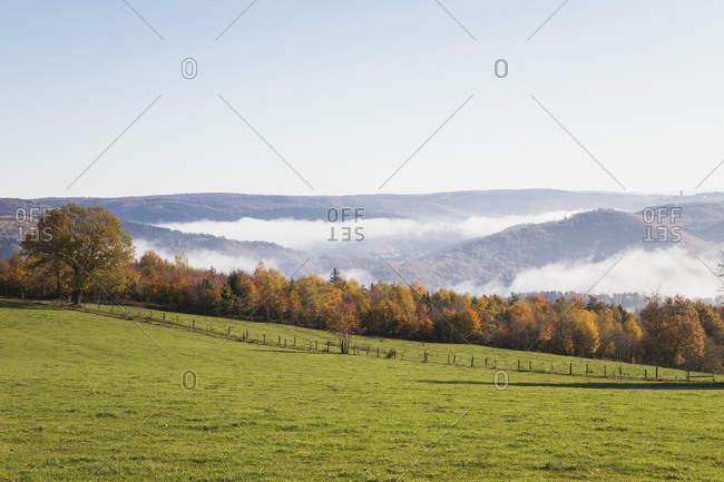 Germany- North Rhine-Westphalia- Clear sky over autumn forest and foggy hills in Eifel National Park