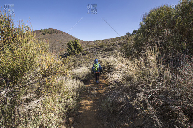 Rear view of a boy trekking in the Arenas Negras area- Teide National Park- Tenerife