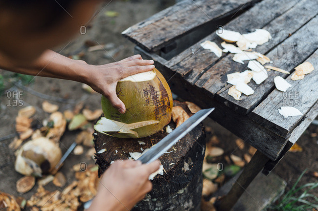 Crop view of young man opening coconut- Borneo Island- Malaysia