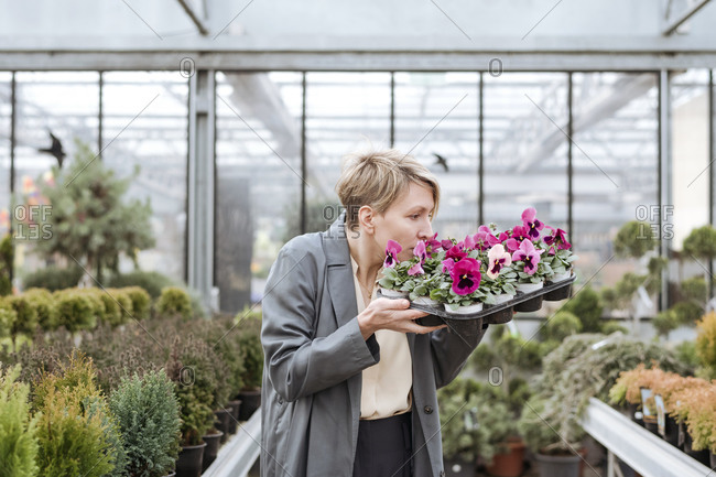 Smiling woman with pansies in flower shop