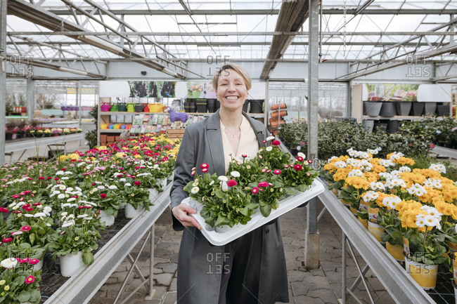 Smiling woman holding daisies in flower shop