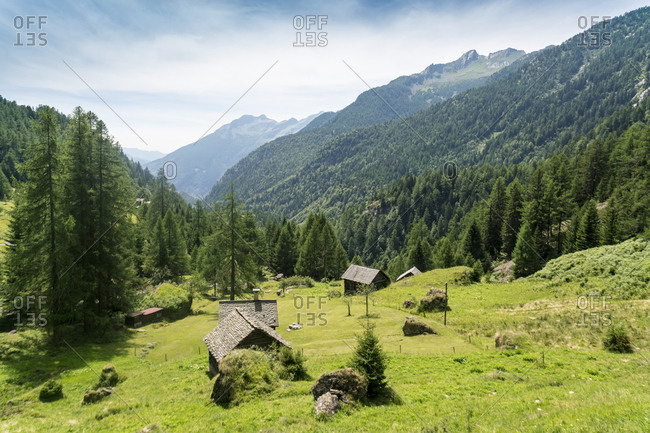 Valley in Ticino in summer with barns and wooden huts and Alps