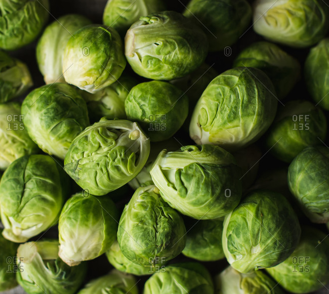 Close up image of a bowl of bright green raw Brussels sprouts.