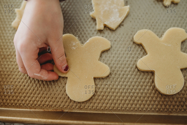 Young girl placing gingerbread on baking sheet
