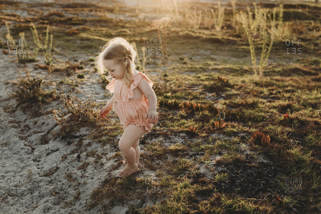 Lifestyle portrait of toddler girl walking away at beach sunset