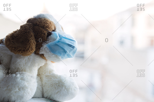 Stuffed dog with a mask, in the hospital at the back window