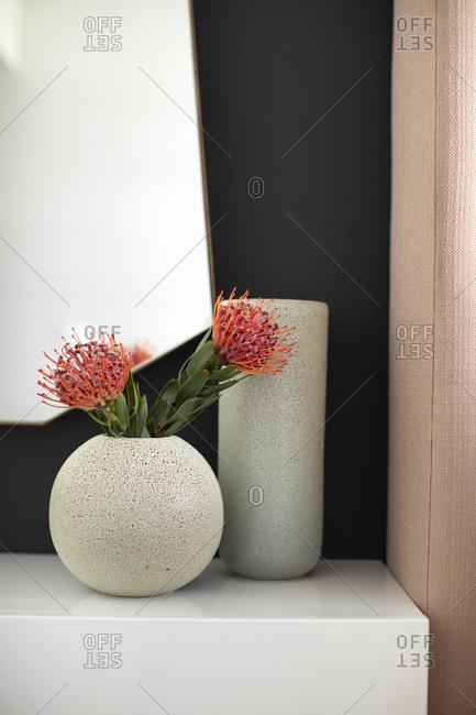 Pincushion proteas in round vase