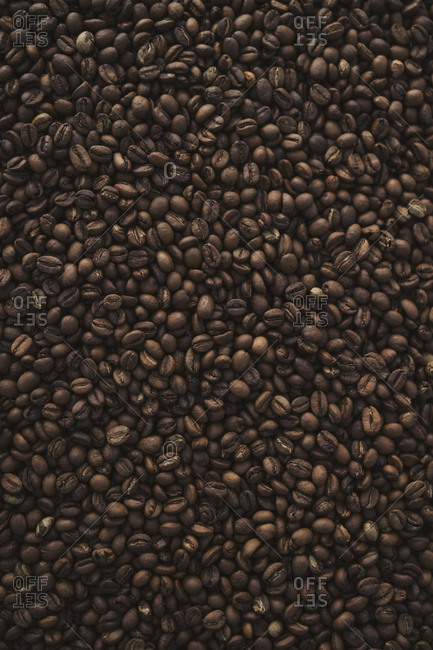 Roasted dark coffee beans laid out