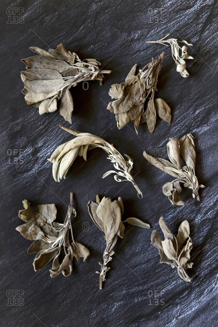 Germany- Dried sage leaves on stone surface