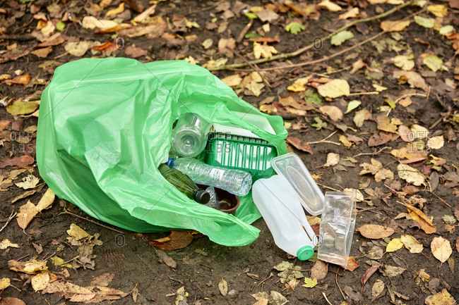 Plastic bag filled with plastic litter spilling on to woodland floor