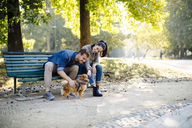 Happy young couple with dog in a park sitting on a bench