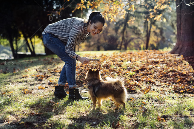 Happy young woman playing with dog in a park